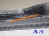 ir-19