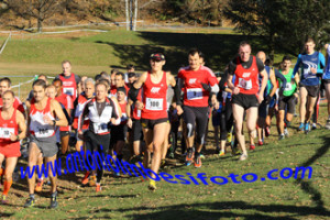 Cross Camignolo 28.11.2015